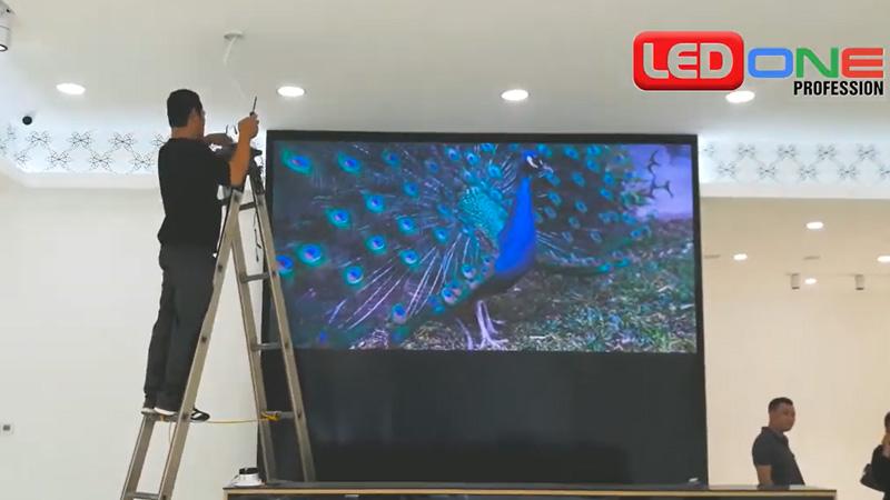 màn hình LED P2.5 tại shop NEM Hải Phòng